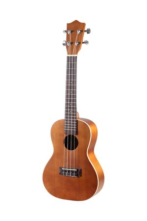 brown ukulele isolated on the white background make for natural pattern plywood