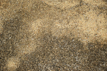 exposed: Exposed aggregate concrete surface