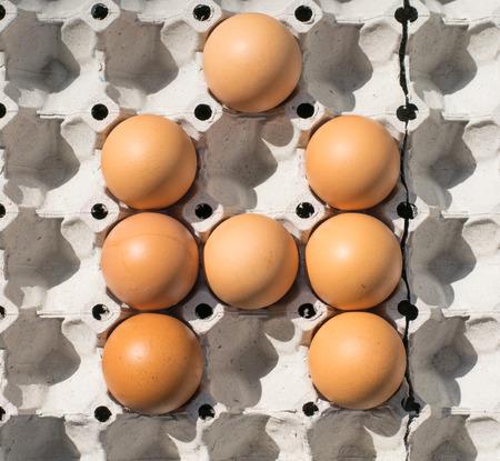 read magazine: A, eggs alphabet