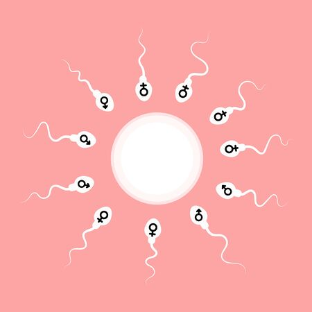 sperm and egg. vector illustration Illustration