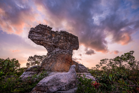 pa: stone in the pa hin ngam national park at sunset, chaiyaphum, Thailand Stock Photo