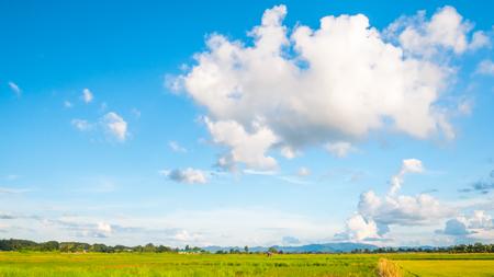 light blue sky on green meadow fields photo