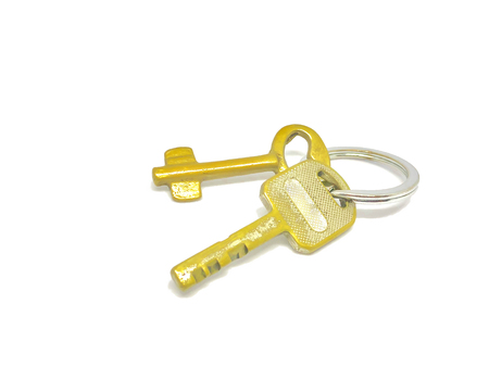 2 Arten von goldenen Schlüsseln im Ring mit Hintergrund.