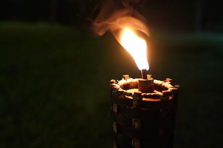 chiudere la torcia e il fuoco nel giardino notturno. Archivio Fotografico