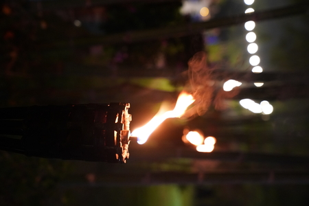 close up torch and fire in the night garden. Stock Photo