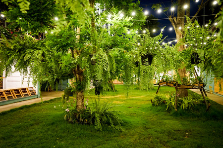 tungsten light line was decorated in the container garden at night. Stock Photo