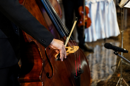 close up musician's hand is playing double bass in indoor event Banque d'images - 124441202