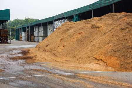 Wood Chips Pile on the alternative power factory.