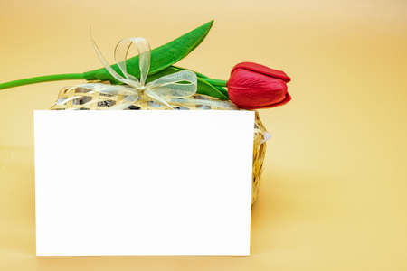 Empty Card in front of snack package and artifact red tulip on top of it on the cream - orange background.