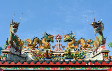 dragons on the roof  photo