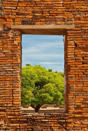 window view: window Stock Photo