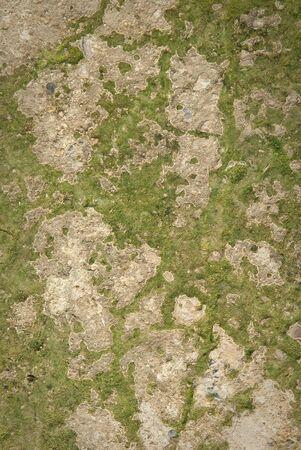 sfondo astratto di un pavimento di cemento  Archivio Fotografico
