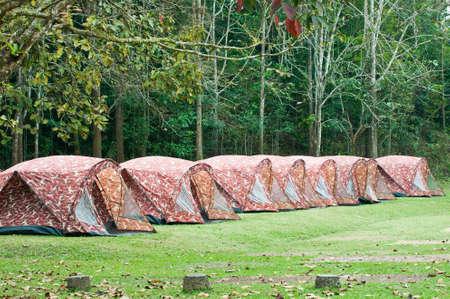tenda turistica nella foresta di Thailandia Archivio Fotografico