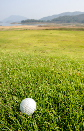old golf ball on green Stock Photo