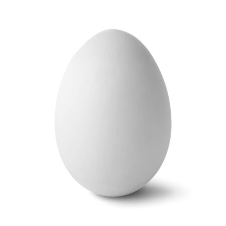 Single white egg isolated on white background with clipping path
