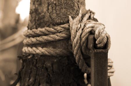 Manila rope around the tree in sepia toning Selective focus Stock Photo