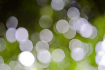 the sun and shade: Abstract defocused background of tree, sky, light and sun shade Stock Photo