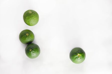 rutaceae: Bergamots (Other names are Kaffir lime, Citrus, Magnoliophyta, Rutaceae) isolated on white background