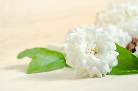 jessamine: Jasmine (Altri nomi sono Jasminum, Melati, Jessamine, Oleaceae) fiori raggruppati a bordo di fondo in legno Archivio Fotografico