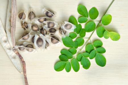 hum: Moringa (Other names are Moringa oleifera Lam., MORINGACEAE, Futaba kom hammer, vegetable hum hum bug, Moringa bug Hoo) leaf and seed
