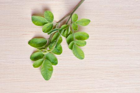 Moringa (Also called as Moringa oleifera Lam., MORINGACEAE, Futaba kom hammer, vegetable hum, Moringa hum bug, Moringa bug Hoo) leaf on wooden board background