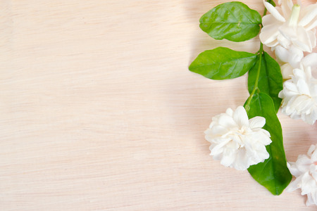 jessamine: Jasmine (Other names are Jasminum, Melati, Jessamine, Oleaceae Jasmine) flowers spread on wooden board background Archivio Fotografico