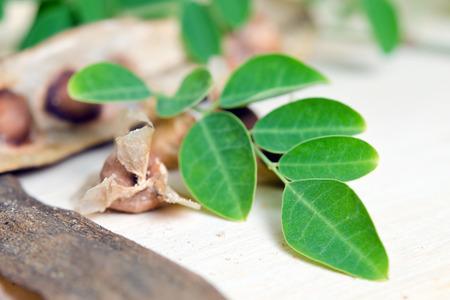 hum: Moringa (Other names are Moringa oleifera Lam., MORINGACEAE, Futaba kom hammer, vegetable hum, Moringa hum bug, bug Hoo) leaf and seed isolated on wood Stock Photo