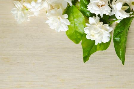 jessamine: Jasmine (Other names are Jasminum, Melati, Jessamine, Oleaceae Jasmine) flowers grouped on wooden board background