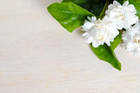Jasmine (Other names are Jasminum, Melati flower, Jessamine, Oleaceae Jasmine) flower grouped on wooden board background with blank copy text space