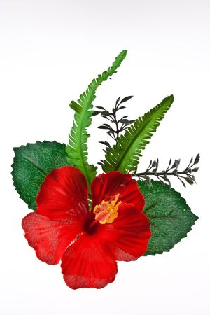 Artificial hibiscus, Chinese Rose on White Background photo
