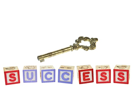 letter blocks: Wording SUCCESS from letter blocks Stock Photo