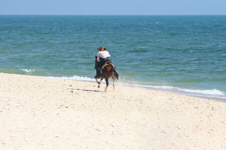 A man ride a horse running on the beach photo