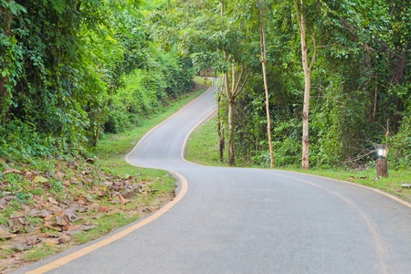 curve: Curve Road Stock Photo