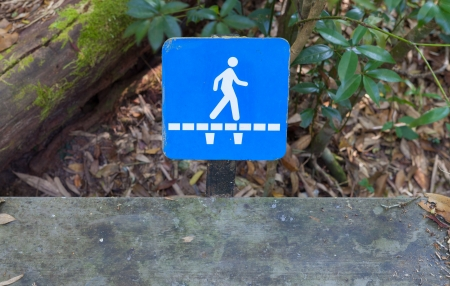 walking path: Walking sign beside the wooden path
