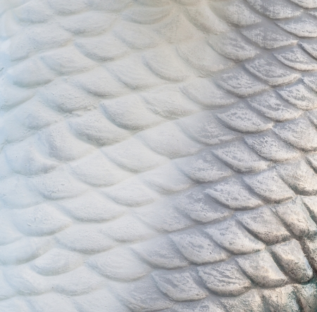 squama: fish scale wall texture background