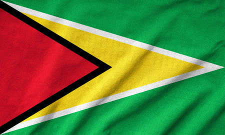 Ruffled Guyana Flag Stock Photo - 22833212