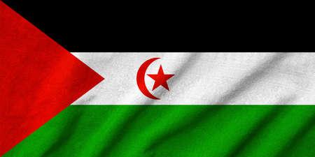 Ruffled Western Sahara Flag Stock Photo - 22832402
