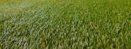 Artificial Grass from plastic close up photo