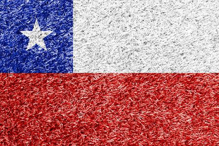 flag of chile: bandera de Chile en el c�sped de textura de fondo