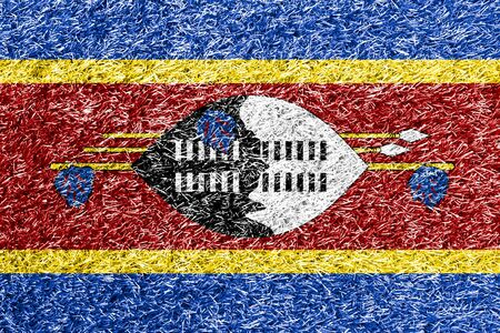 carpet clean: Swaziland flag on grass background texture