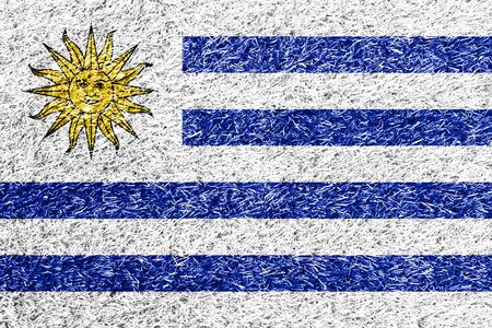 carpet clean: Uruguay flag on grass background texture