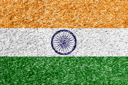 carpet clean: India flag on grass background texture Stock Photo