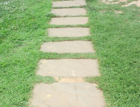 Walkway on green grass in garden photo