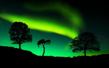 alpine zone: Northern lights Aurora borealis