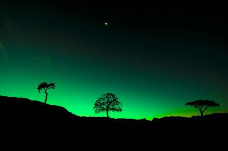 aurora borealis: Northern lights Aurora borealis