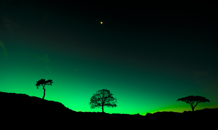 arctic zone: Northern lights Aurora borealis