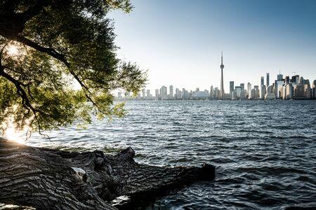 Toronto city skyline, Ontario, Canada Banco de Imagens