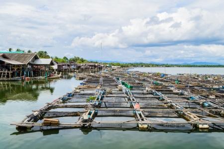 Fishery on the sea at fishing village, Phang nga