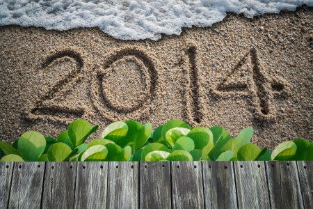 new year with 2014 writen on the beach and beach morning glory Stock Photo - 24639110