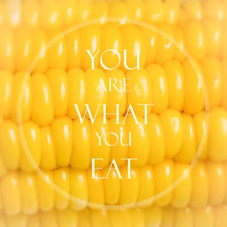 Meaningful quote on blurred corn background, you are what you eat